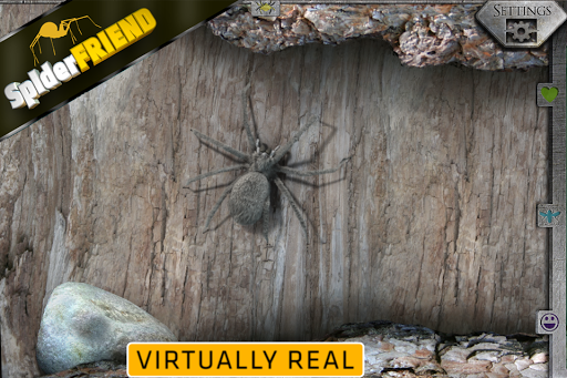 SpiderFRIEND - real scary pet для планшетов на Android