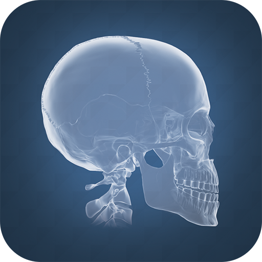 Anatomy 4D - Apps on Google Play | FREE Android app market