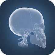 Anatomy 4D 2.0.1.110 Icon
