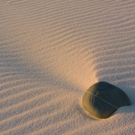 by Nico Nel - Nature Up Close Sand