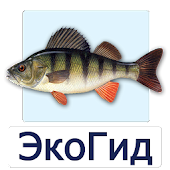 EcoGuide: Russian Fish