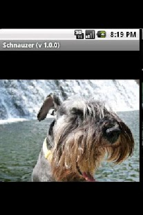 Schnauzer - screenshot thumbnail