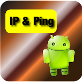 Network IP & Ping