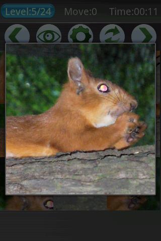 Squirrel Puzzles. - screenshot