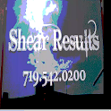 Shear Results icon