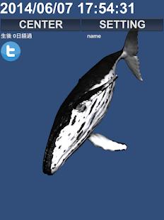 育成Whaleくじらちゃん!!