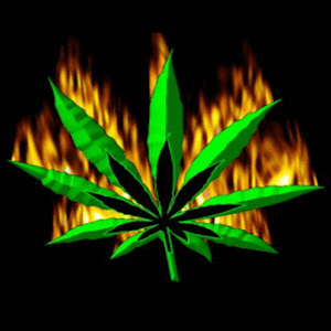 Weed Flaming Live Wallpaper Vs Bob Marley