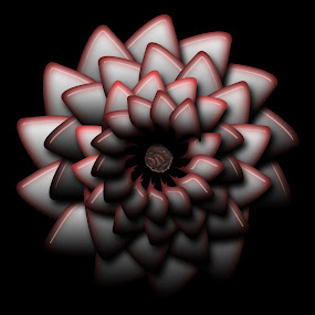 chunk by Dietmar Kuhn - Illustration Abstract & Patterns ( petals, copper, coin, reflections, circular, symetry, red, cicle, dark, moody, pink, flowery, black, shiny,  )