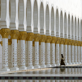 Arabesque by Marco Parenti - Buildings & Architecture Places of Worship ( mosque, scene, abu dhabi, architecture )