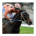 Black Caviar Fan App logo