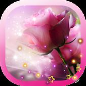 Roses Pink n Red