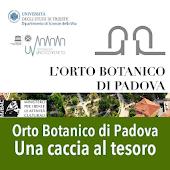 Caccia al Tesoro Orto Padova