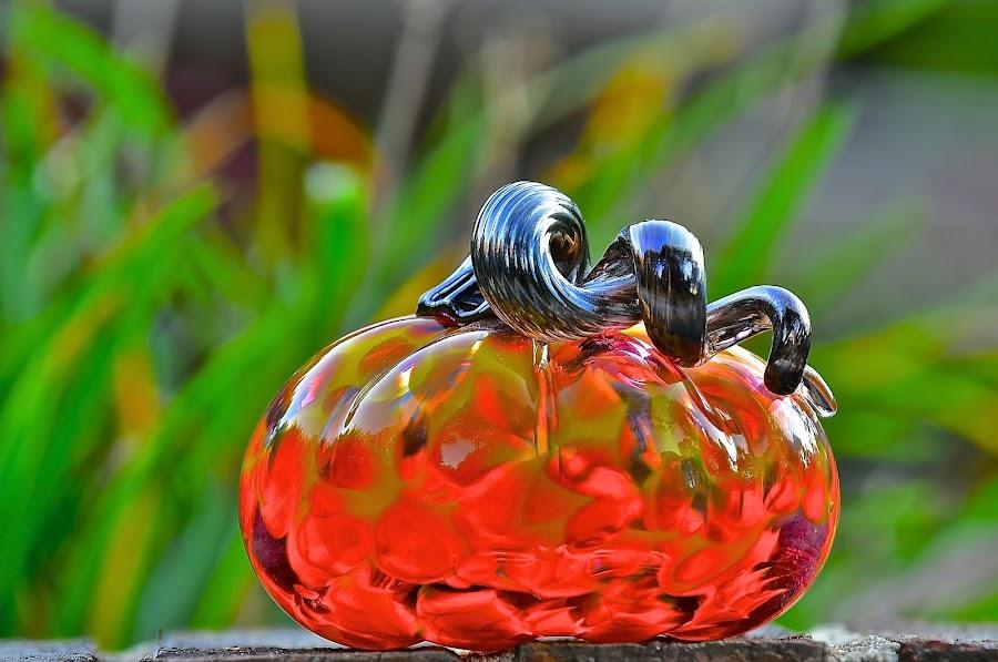 Glass Pumpkin by Roy Walter - Artistic Objects Glass ( pumpkin, glass, artistic objects )