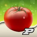 Purdue Tomato Doctor icon