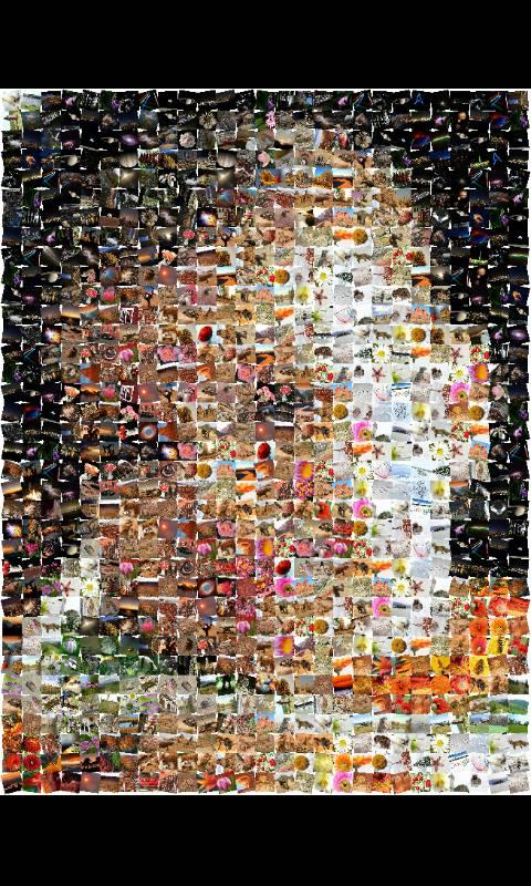 ZaBa Photo Mosaic Lite- screenshot