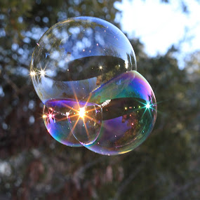But for a Moment by Ron Kreml - Artistic Objects Other Objects ( star-burst, bubble, reflection, rainbow, sun )