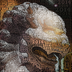 2014 by Lennie L. - Typography Captioned Photos (  )