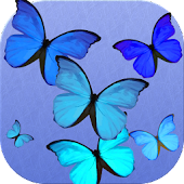 Blue butterfly battery