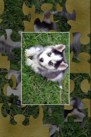 Puppies Puzzle - screenshot