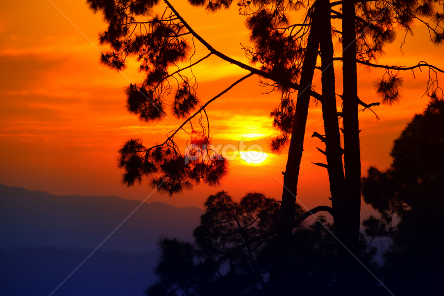 by Amrita Bhattacharyya - Landscapes Sunsets & Sunrises ( , silhouette, colorful, mood factory, vibrant, happiness, January, moods, emotions, inspiration )