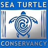 The Sea Turtle App