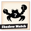 Match the right shadow