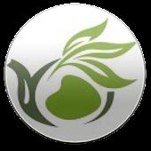 Şifalı Bitkiler Rehberi