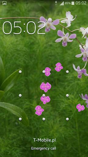 蘭花動畫壁紙 玩個人化App免費 玩APPs