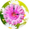 Daisy Clock Live Wallpaper icon