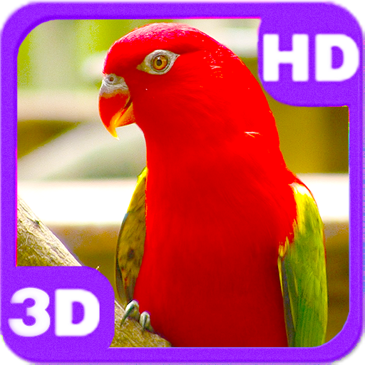 Cute Red Parrot on Next Branch