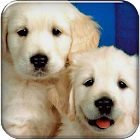 Puppy Go launcher theme icon
