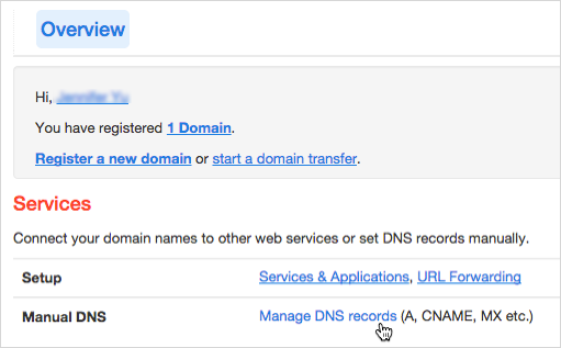 Manage DNS Records link