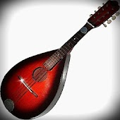 Virtual Mandolin