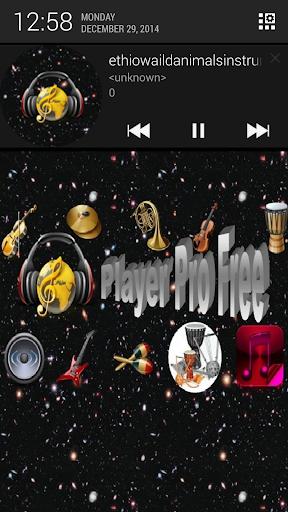 Player Pro Free