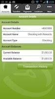 Screenshot of USB Mobile Money