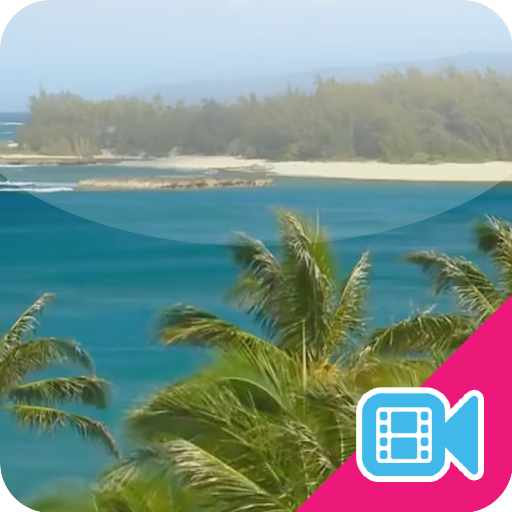 Hawaii Live WallPaper