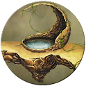 FREE Fantasy Swamp Live Wall icon
