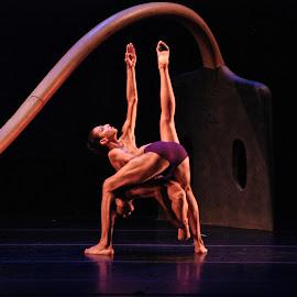 Spring Yaounde by Paula Hamada Summit - Sports & Fitness Other Sports ( griot new york, gfd, elegance, dance, garth fagan dance )