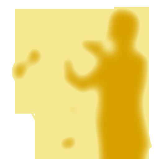 정진승클라리넷, Hans플룻, 교향악단, 오케스트라