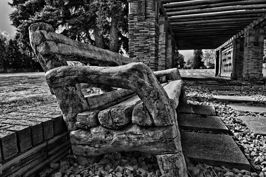 by Todd Yoder - Black & White Objects & Still Life ( structure, bench, trees, bricks, rocks, bkack & white,  )