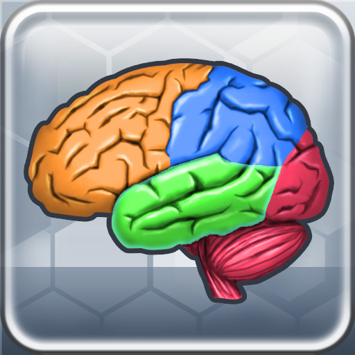 More Brain Exercise Lite