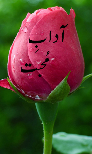 Aadab-e-Muhabbat