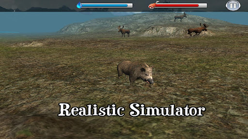 Boar Simulator