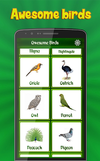 Birds Calls Sounds Ringtones