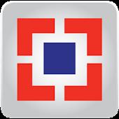 HDFC Securities Ltd AR 2008-09