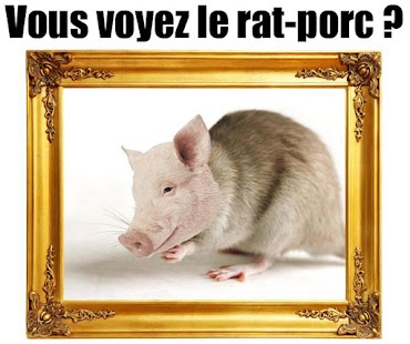 Ratporc - screenshot thumbnail