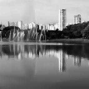 São Paulo - Brasil by Brianna Oliva - Black & White Street & Candid ( cidade, são paulo, city )