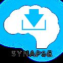 Mandarin Chinese Synapse logo