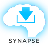 Mandarin Chinese Synapse