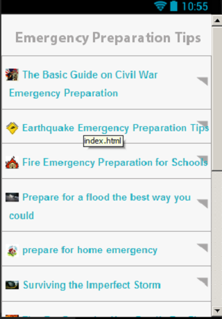 Disaster Tips